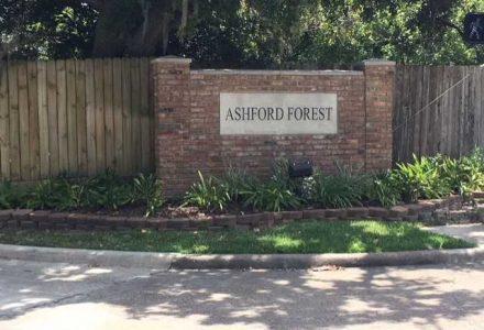 Ashford Forest