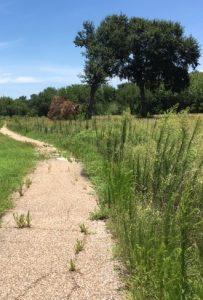 Bear Creek Park Golf Cart Path