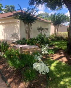 June Yard of the Month - 11519 Overbrook